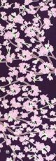 手ぬぐい「桜の花 地紫」